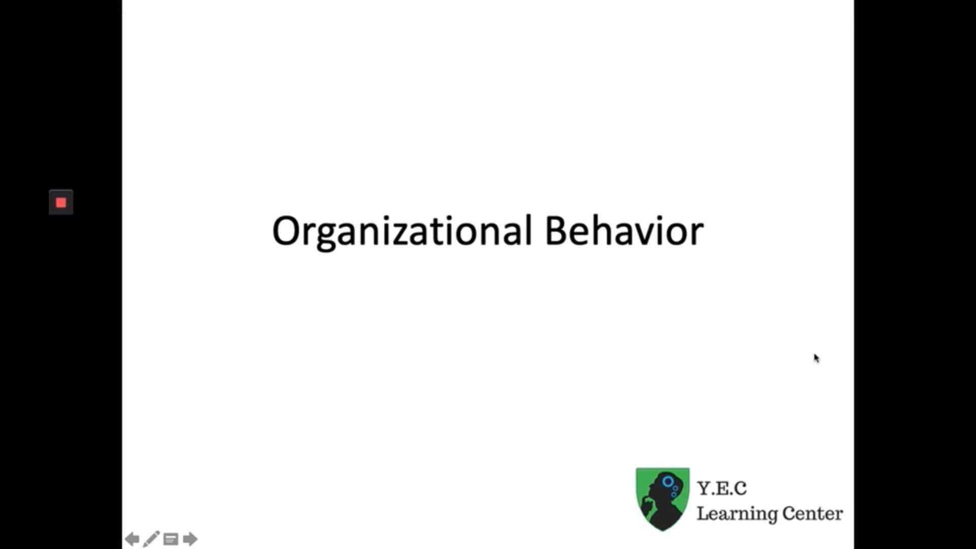 Organizational Behavior OB 1