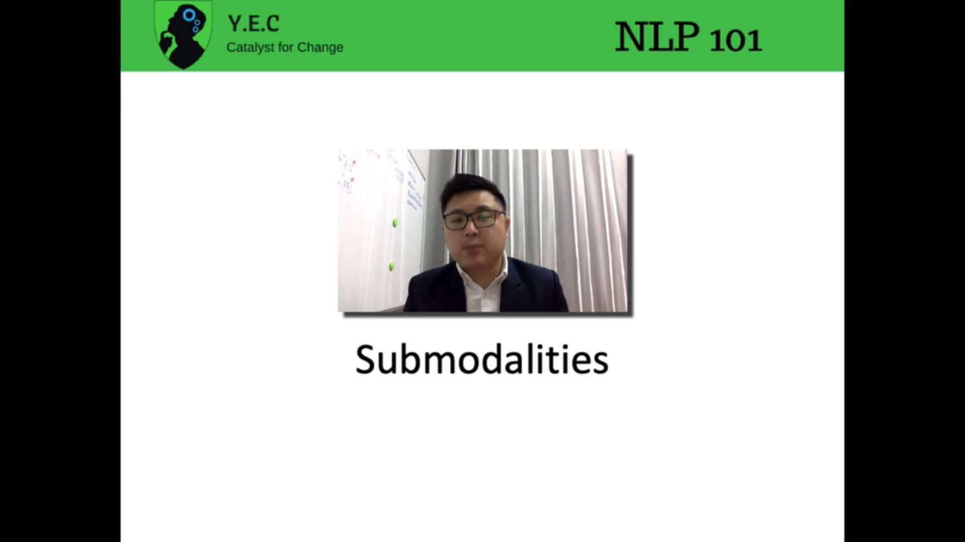 NLP 13 - Submodalities