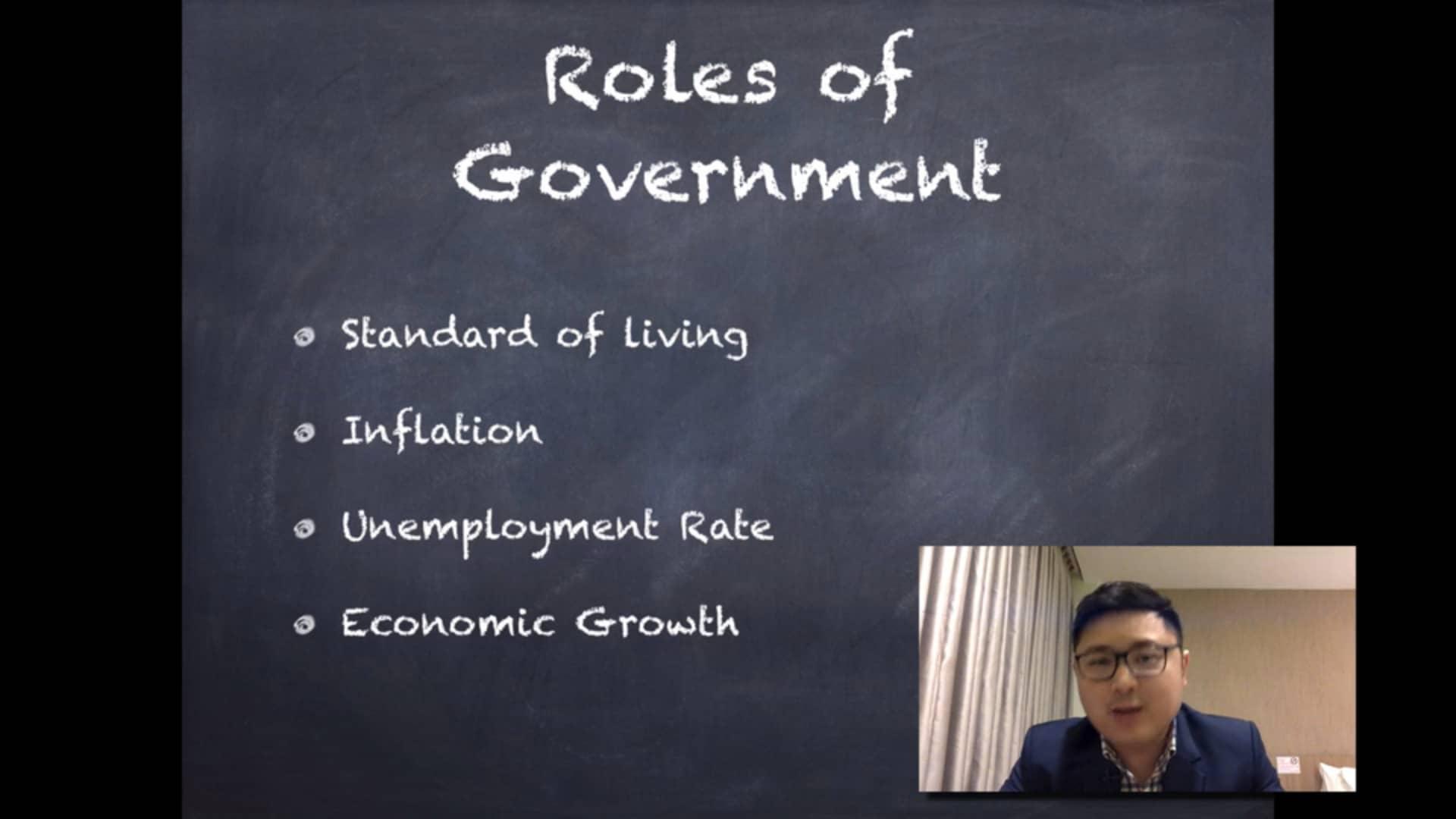 economics 6 Government role